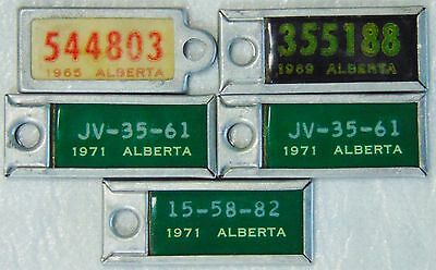 5 Vintage Mini War Amps Of Canada Licence Plates 1965, 69, And 3 1971, Alberta.