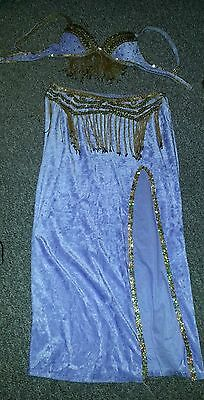 Lavender and Gold Belly Dance Costume