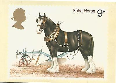 Postcard - Shire Horse Stamp - 1978
