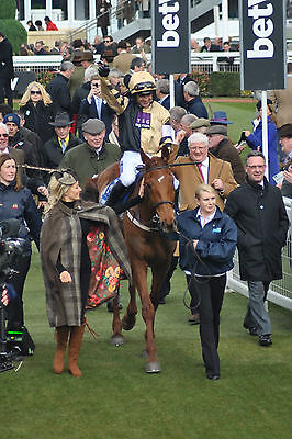 """Yorkhill & Ruby Walsh - 9"""" x 6"""" Colour Photograph"""