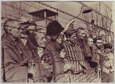 Russian Wwii Press Photo: Auschwitz Concentration Camp Survivors, Poland 1945