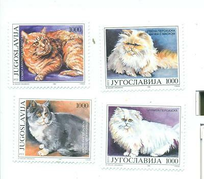 Animaux: Chats Complete Series Yougoslavie (New) MNH 1992