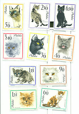 Animaux: Chats Complete Series Pologne (New) MNH 1964