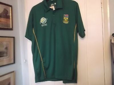 South Africa Cricket Shirt Large Size Official Product
