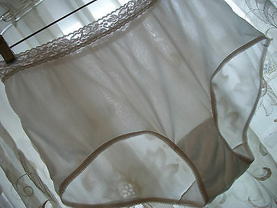 Vintage Scanties by Lilyette Lacy Sheer Lustrous Nylon Panties Sz 9 XL