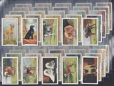 Gallaher - Dogs, Second Series Of 48 Issued In 1938. All Scanned.