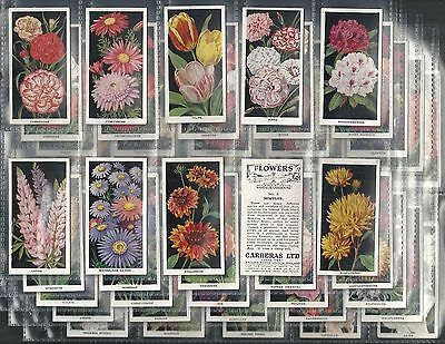 Carreras, Flowers, Set Of 50, Issued In 1936.