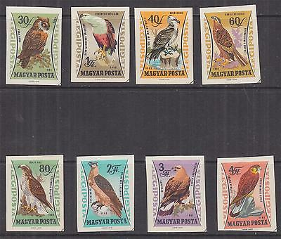 HUNGARY, 1962 Birds of Prey set of 8, IMPERF., lhm., cto.