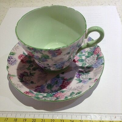 "Shelley ""Summer Glory"" Tea cup and saucer"
