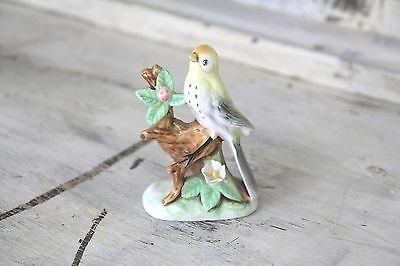 Vintage Collectible Ornament Tropical Bird Sitting On The Branch Parrot