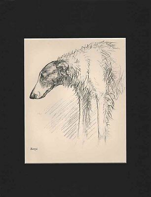 Vintage Borzoi Dog Large Print 1938 by K.F. Barker Matted 10 x 13