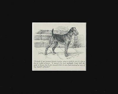 "Airedale Dog WATCHES THE HOUSE by M. Kirmse RARE Print 1928 8x10"" Mat"