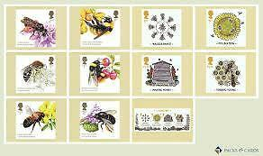 Bees Phq Cards New