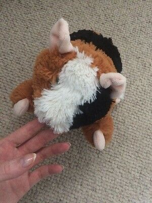 topshop guinea pig microavable