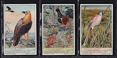 Liebig, Bearded Birds (F1420 S1408) Set Of 6 Issued In 1940.