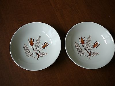 Vintage Tanglewood Desert  Bowls  by Royal China made in USA~Lot of 2