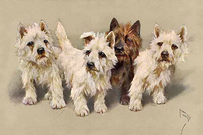 Cairn Terrier Dogs by Arthur Wardle 1930's ~ LARGE New Blank Note Cards
