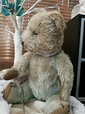Antique - Chiltern Bear- 1930- Blue- 14' - fully Jointed- REDUCED