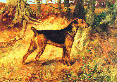 Airedale Terrier Dog  1897 by Auther Wardel ~ New  Large Note Cards