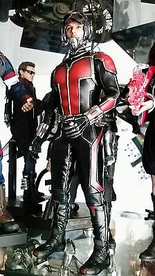 Hot toys ANT-MAN MMS308 1/6 Figures original version