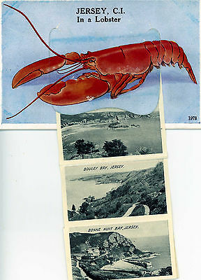 Novelty Postcard. JERSEY C.I. in a Lobster Channel Islands