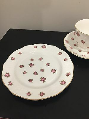 Aynsley 'Rosedale'    Plate, Cup and Saucer