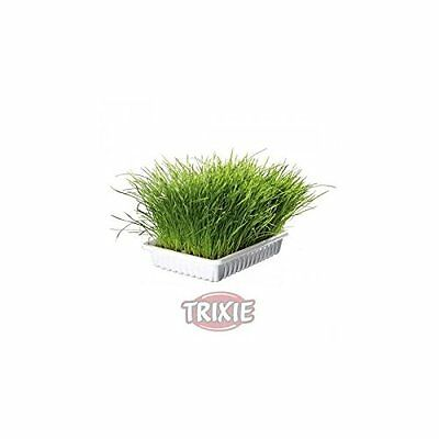 Trixie Bag Of Cat Grass Seeds - Approx. 100 G/Bag Grow Your Own