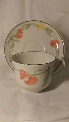 Johnson Brothers Summer Delight Cup and Saucer Set (s)