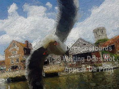 A2 Poster Flying Gull Historic Market Town Wareham Quay # tracl 013
