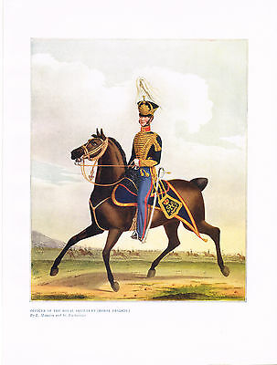Officer Of The Royal Artillery (Horse Brigade) Antique Military Picture Print