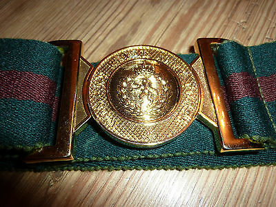 Womans Royal Army Corps Stable Belt With Gold Metal Buckle