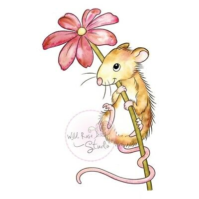 Wild Rose Studios A7 Clear Stempel Set Mouse and Flower