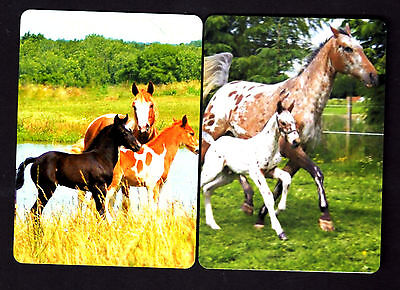 WIDE Swap/Playing Cards - Lovely Horses x 2