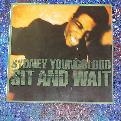 """Sydney Youngblood ★ if only i could ★ 12"""""""