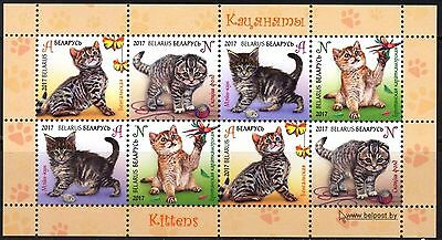 Belarus 2017 Cats Sheet of 8 MNH**