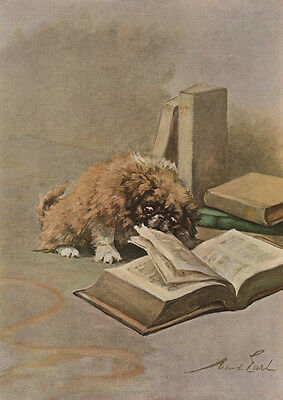 Pekingese Puppy Dog WITH A BOOK by MAud Earl 1910 - LARGE New Blank Note Cards