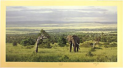 "ANTHONY GIBBS ""Into the Rift"" elephant africa LE SIGNED SIZE:52cm x 90cm NEW"