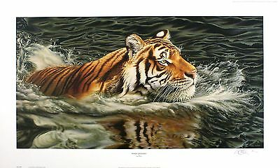 "NEIL ALLEN ""River Crossing"" tiger swimming SGD LTD ED! SIZE:42cm x 70cm NEW RARE"