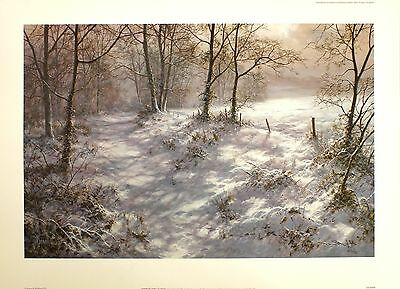 "DAVID DIPNALL ""Where Bluebells Grow"" snow SIGNED LTD ED SIZE:56cm x 78cm NEW"