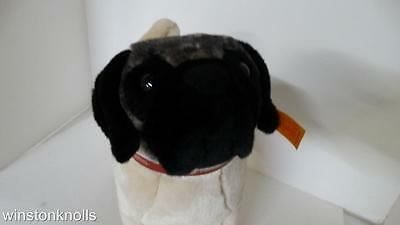 2005 Steiff Akc Pug With Red Leather Akc  Branded Collar