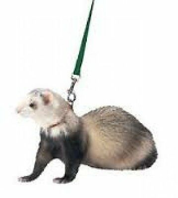 Marshall Ferret Harness & Lead various colours Great for Walking your Ferret