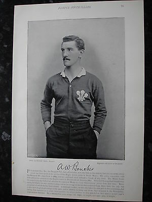 RARE Original Famous Footballers, #075 Boucher, Newport & Wales Rugby 1895 - 96