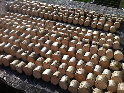 50x Rustic Wedding Party Restaurant Name Place Card Holders Quality Wooden Uk :)