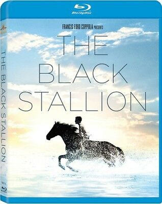 The Black Stallion [New Blu-ray] Digital Theater System, Subtitled, Widescreen