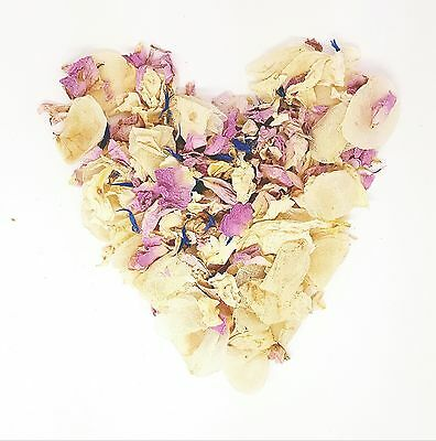 Pastel Vintage Pink Real Petal Biodegradable Wedding Confetti 1 Litre 10-12