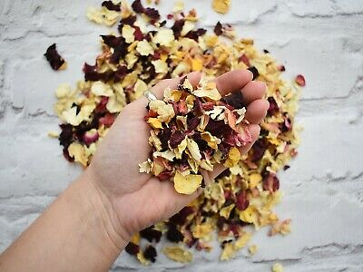 Natural Dried Petal Biodegradable Wedding Confetti Rainbow Multi Coloured 1L