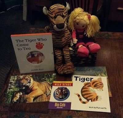 The Tiger Who Came To Tea Story Sack Resources in Box