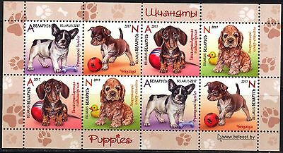 Belarus 2017 Dogs Puppies Sheet of 8 MNH**