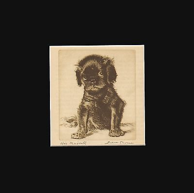 vINTAGE Cavalier King Charles Spaniel Puppy Dog Print 1936 by Diana Thorne 8X10