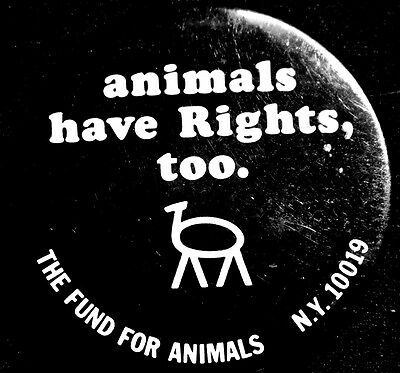 Animals Have Rights Too - Fund For Animals - Original Large Pinback Scarce